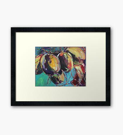 coconuts revisited Framed Print