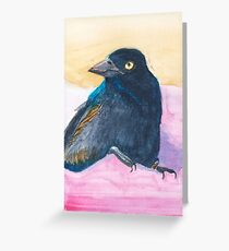 Lucky the grackle Greeting Card