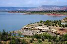 Abiquiu Lake, New Mexico by Vicki Pelham