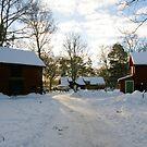 Winter in Apladalen by João Figueiredo