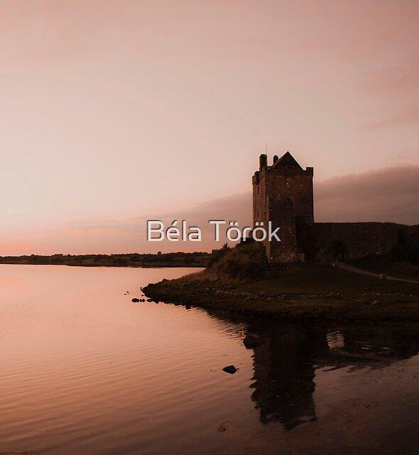 Dunguaire Castle by Béla Török