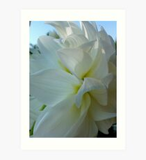 Dahlia. by Brown Sugar.  Floral iPad series. You are a gift if you like ! Art Print