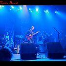Tedeschi Trucks Band by John Linton