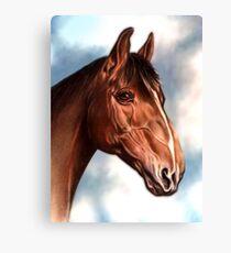 Horse Waiting Canvas Print