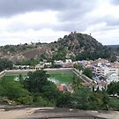 View from Shravanabelagola Hill by abhisanto