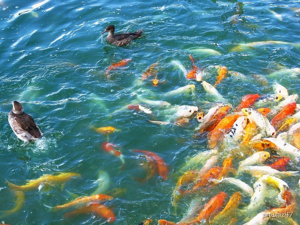 Not Your Average Fish Market by artwhiz47