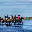 An Icelandic trek! by Sue Ratcliffe