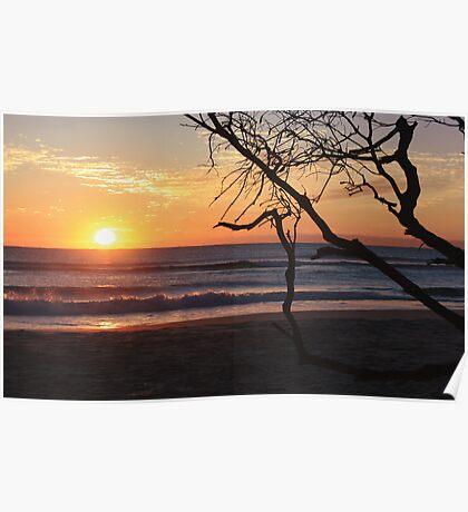 sunrise on kingscliff beach  ... Poster
