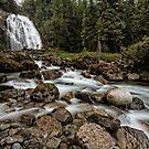 The Falls at Princess Louisa Inlet by toby snelgrove  IPA