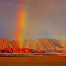 Pot of Gold by Jill Fisher