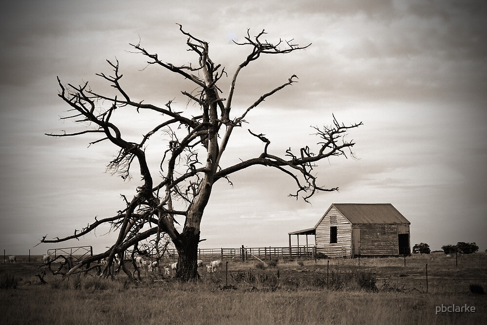 Old Farmhouse - Clunes by pbclarke