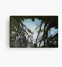 Forest Reflections Canvas Print