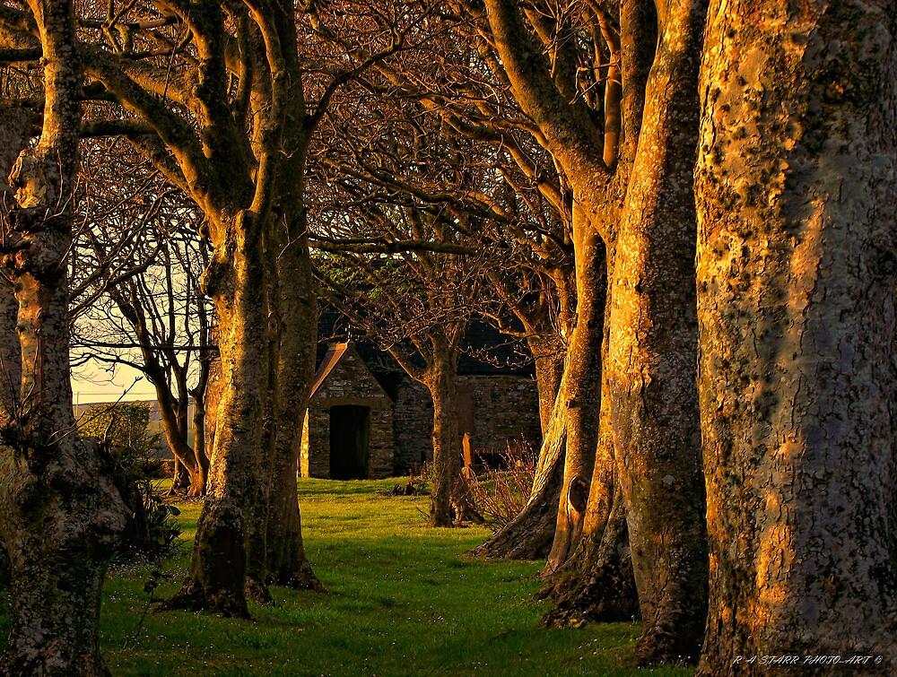 church yard  by andystarr1