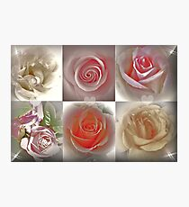 Magical Roses Photographic Print