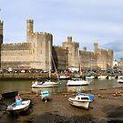 Caernarfon Castle  by timmburgess