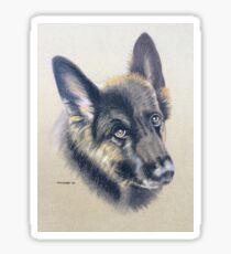 Koffi the beautiful German Shepherd Sticker