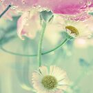 Flower Soup 2 by lorrainem