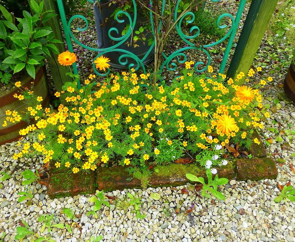Flowers From An Irish Garden For Mattie by Fara