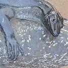 Black Marble Goanna by TheaShutterbug
