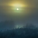 In the Morning Mist by Justin Atkins
