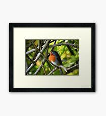 Waiting for winter Framed Print