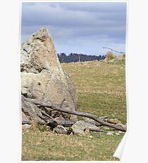 Granite boulder Poster