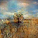 field of dreams by © Karin Taylor