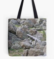 Granite, granite everywhere! Tote Bag