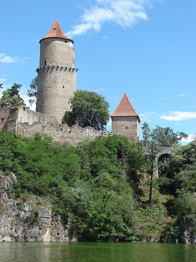 Castle Zvíkov by Natas