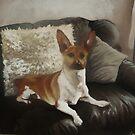Toby. Pet Portrait by imajica