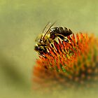Bee mine.... by Yool