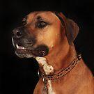 Rudy Portrait by Renee Blake