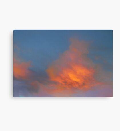 Vivid Morning  Canvas Print
