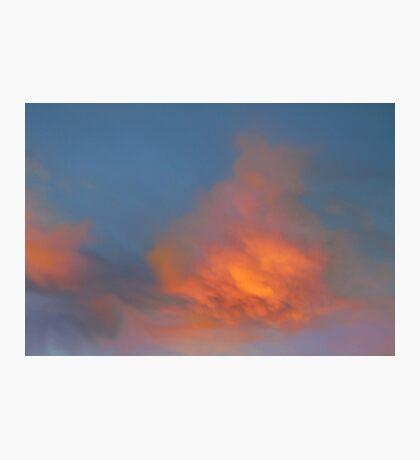 Vivid Morning  Photographic Print