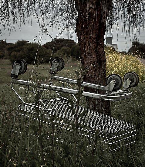 Dead Cart by Gavin Kerslake