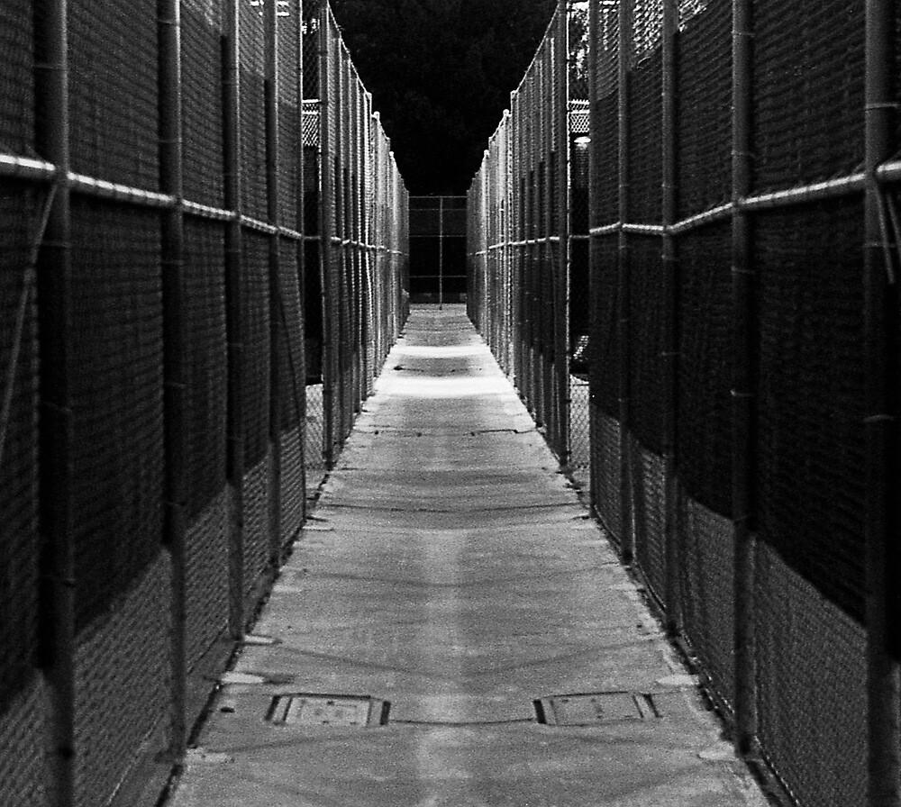 Spooky Walk by James2001