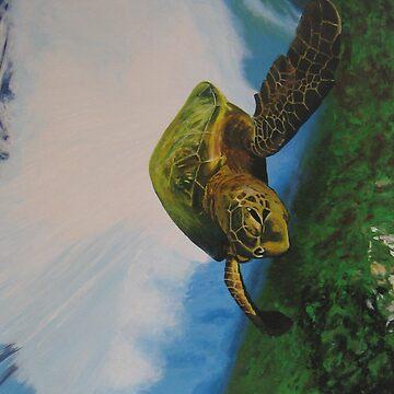 turtle by MBuckman