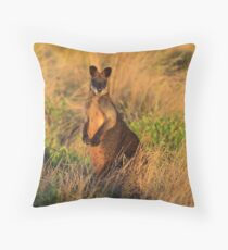 Swamp Wallaby. Throw Pillow