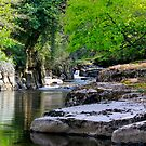 River Greta, Devil's Gorge. North of of England.  by Ian Alex Blease