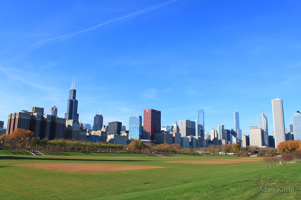 The City from Grant Park by Adam Kuehl