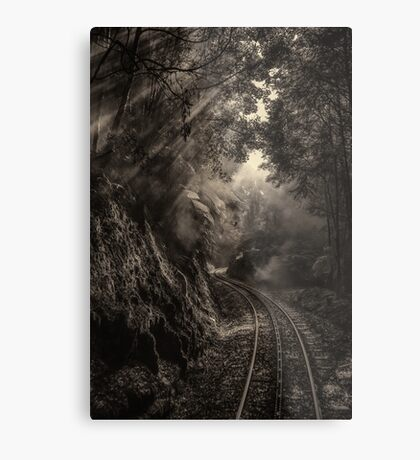 Steam and rainforest Metal Print