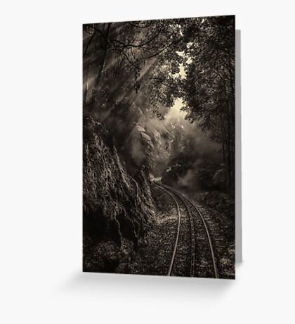 Steam and rainforest Greeting Card