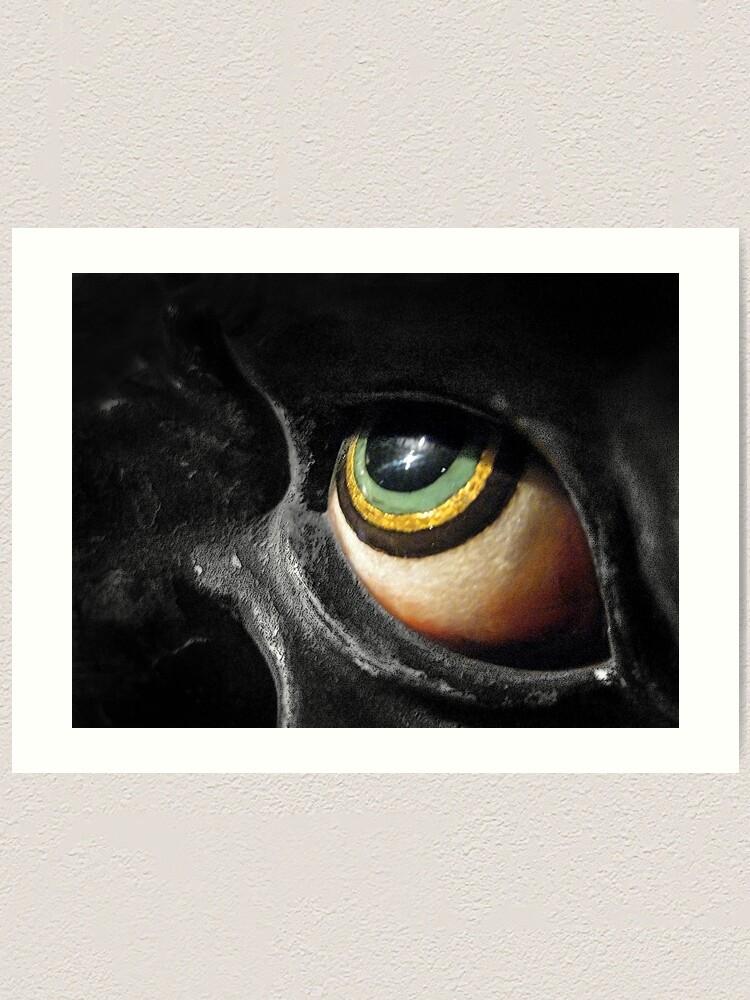 Alternate view of The Eye Art Print