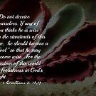 1 Cor. 3:18,19 by mariatheresa