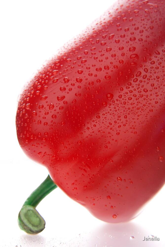 Red pepper by Jenella