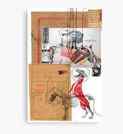 ORGANICA Canvas Print