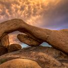 The Arch by Leasha Hooker