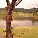 Lake by abhisanto