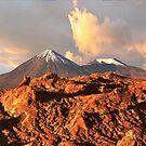 Desierto de Atacama.................................Chile. by cieloverde