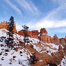 Bryce Canyon by Paul Gilbert